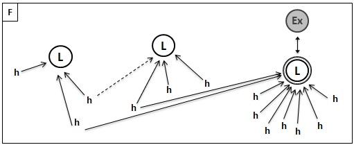 Figure 1 : Représentation schématique du processus de différenciation par identification à un acteur extérieur menant à l'atomisation de la favela (univers F : favela, h : habitant, L : leader, Ex : acteur extérieur).